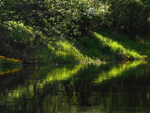 Raudna River