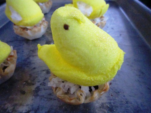 Peep on shell nest, take one