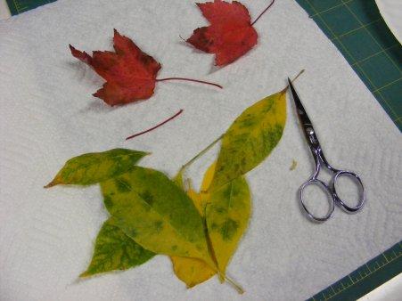 Trim Leaves