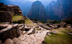 Machu Picchu Steps, Peru, 2,450m