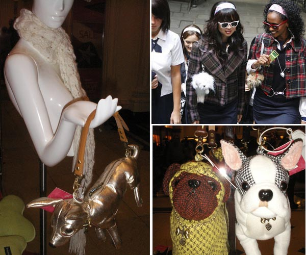 dog purse, gossip girl, chic and charming, macys