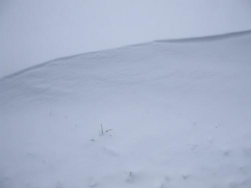 Minimal snowscape