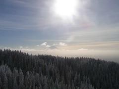 Mt. Rainier from Tiger 1