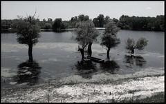 bara1 (DANAKILI) Tags: scenicsnotjustlandscapes