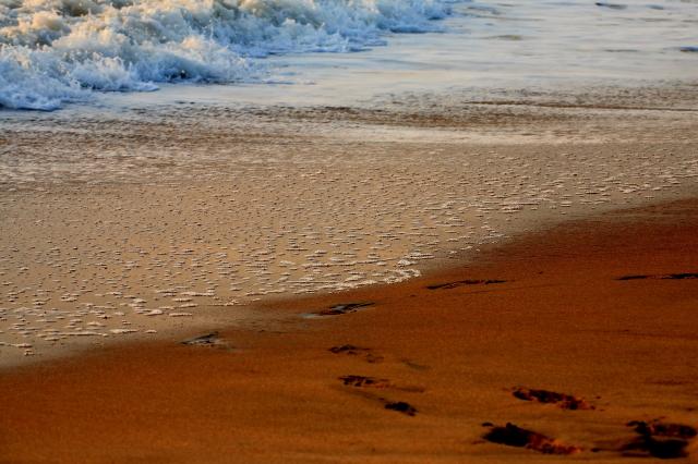 golden shores...