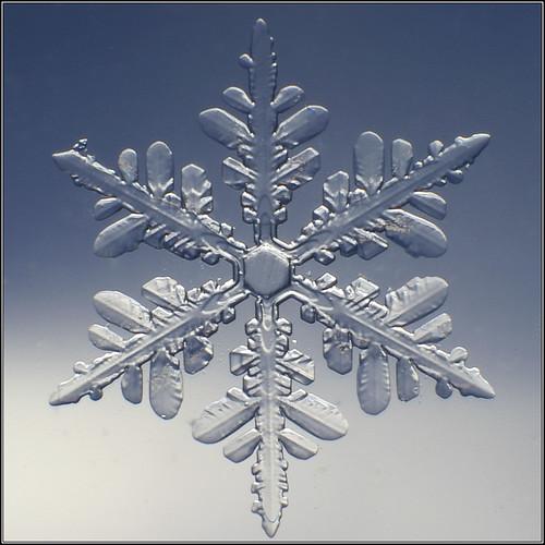 Snowflake_080009