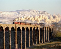46203 at Ribblehead Viaduct Yorkshire 02-01-95 (prof@worthvalley) Tags: uk railroad rose all princess transport railway steam margaret locomotive carlisle types settle ribblehead 46203