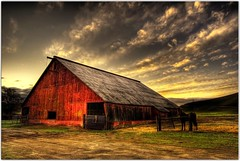 Hidden California (Extra Medium) Tags: california horse clouds barn sunrise dawn scenery hdr abigfave thisphotoisthebest thebestjerry