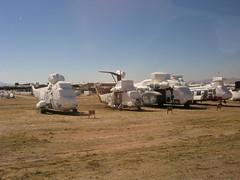 Helicopters (Will Prescott) Tags: tucson aviation pima boneyard davismonthan amarc amarg