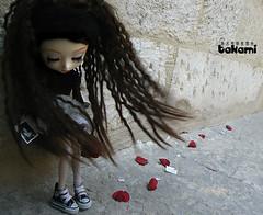 Triste vent (  Pounkie  ) Tags: flower fleur rose petals pullip takami assa ptales to thewind picturetest pullipassa picturetestthewind tristevent