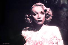 Marlene Dietrich TV Shot (Walker Dukes) Tags: pink woman white sexy beauty germany hair tv screenshot eyes before lips spotlight hollywood actress filmstill actor lush seductive diva tcm busty botox luscious creamy moviestars