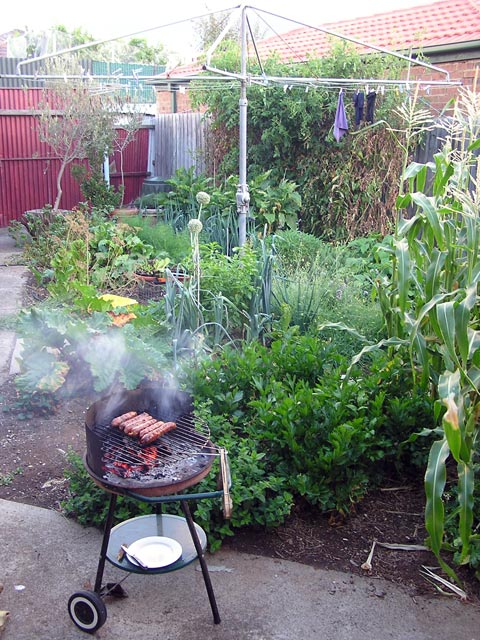 sausage fancier: urban garden