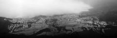 多依树一 (dvd3141) Tags: china blackandwhite bw wow landscape rice fields 中国 yunnan stiched yuanyang terraced 云南 元阳 ptgui panoramatools pttools duoyishu 多依树 dvd3141 ©davidphunt