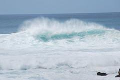 Hawaii '08 075