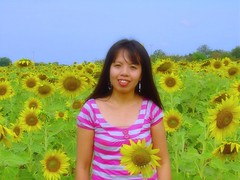 LOvE sunflowers..LoVE you now and forever...