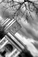 In secondo piano (AlexLiverani) Tags: windows italy white house black blur building alex fountain monster lensbaby skyscraper highway memorial italia photographer monumento background branches piano professional emilia primo e grattacielo palazzo eco bianco nero rami ravenna foreground fifth fotografo romagna faenza finestre fontanone secondo quinte sfocato professionista stradone ecomostro abitazione liverani