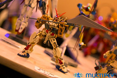 9th Philippine ToyCon 2010  (171)