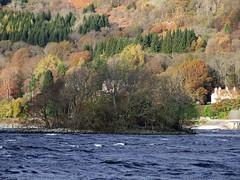"""Neish Island (nz_willowherb) Tags: autumn see scotland flickr tour visit tourist loch visitor earn lochearnhead to"""" """"go visitkillin seekillin gotokillin whattoseearoundlochearn"""
