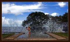 The Power of the Waves (Ozventure) Tags: geotagged surf waves australia brisbane spray mangrove queensland surprised caught eloise hightide nudgeebeach geo:tool=gmif geo:lat=27344110 geo:lon=153102137