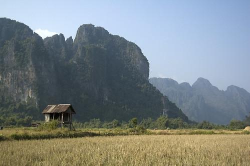rice paddy hut
