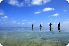 murky waters of maafushi (maapu) Tags: sea fab nature canon children um maldives murky maafushi murkywaters maapu mauroof canon40d mauroofkhaleel