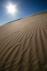 Solar dunes (Lil [Kristen Elsby]) Tags: travel light summer sun hot texture landscape solar nationalpark sand ancient pattern wind dunes hill dry windy australia roadtrip lensflare nsw heat newsouthwales outback remote deserted arid isolated sanddunes mungo australasia oceania travelphotography outbackaustralia lakemungo mungonationalpark wallsofchina willandralakesworldheritagearea