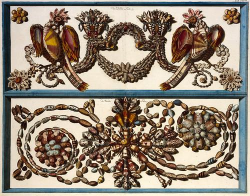 Albertus Seba Cabinet of Curiosities - kb.nl
