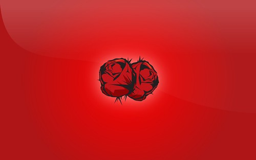 Red Rose Wallpaper. wallpaper, desktop background, whatever you want to call