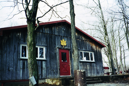 Paddock Café :: 収穫シーズンには人気のあるシュガーシャックは満員になるらしい...
