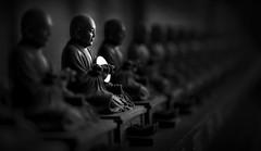 Buddhist monk statue (Sacule) Tags: 大聖院 hatsukaichi hiroshima chūgoku 33 kannon pilgrimage maple trees suishōji 水精寺 daishōin daisyōin itsukushima shrine world heritage prefecture japan honsu nippon asia travel japon viaje canon 600d sigma1770 photoshop blackandwhite contrast statue buddism buddha monk dark monochrome panoramic winter 2017 coin dalai lama