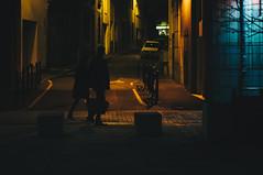 202/365 (alex bo.) Tags: night nikon nikond90 50mm street streetphotography rue nantes nuit urban city cityscape people