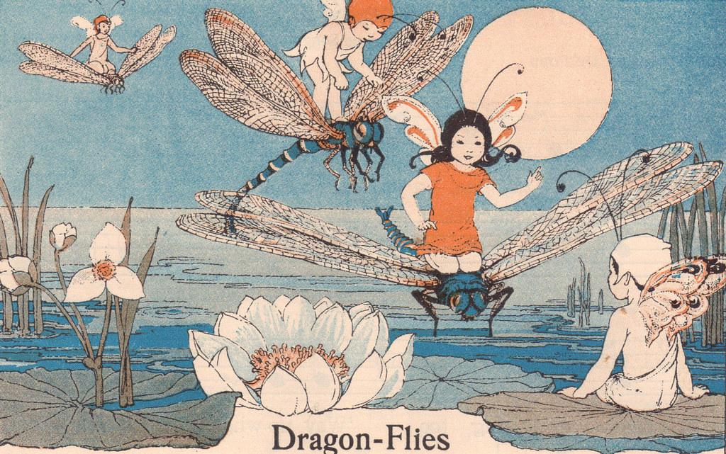 Dragon-Flies or the fairy aeroplanes; illustrator Shirley Kite