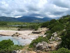 Les marais derrière la baie d'Arbitru