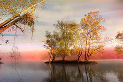 Mystic James River 2 (frankeys creation) Tags: trees colors misty fog sunrise river virginia richmond mystic jamesriver supershot mywinners abigfave anawesomeshot thebestofgodscreation