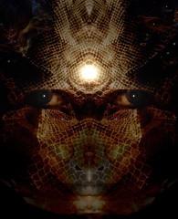Cosmic-Snake (h.koppdelaney) Tags: life tree art ancient artistic mercury expression snake mater holy mephisto cosmic archetype kundalini nna