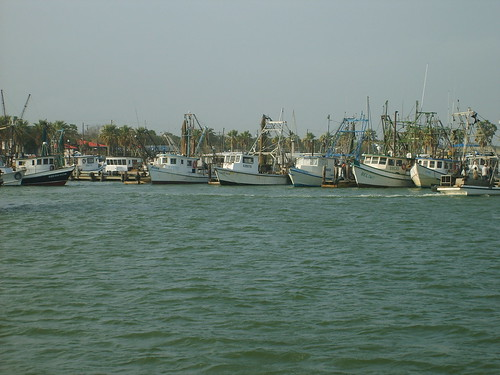 Shrimping Boats
