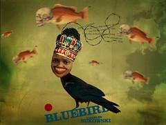 bukowskis bluebird (medialunadegrasa) Tags: photomanipulation charles bluebird bukowski juancarlos