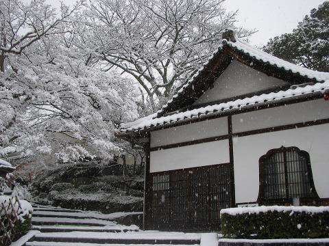 当麻寺(雪景色)-10