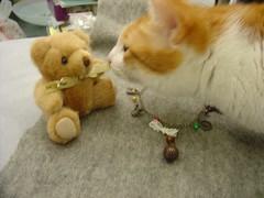 cat accessory