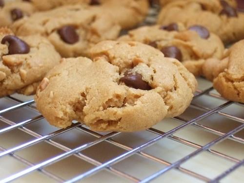 flourless p-nut (6)
