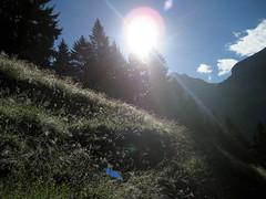 Morgen im Kiental , Kanton Bern , Schweiz (chrchr_75) Tags: mountains alps nature landscape schweiz switzerland suisse suiza hiking swiss natur berge bern alpen christoph svizzera landschaft berne wandern berner berna wanderung wanderweg berneroberland oberland 0608 kanton chrigu wanderwege kantonbern brn chrchr hurni chriguhurni chrchr76 albumdrttehorn2006 hurni060825