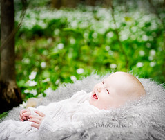 Happy Baby Bokeh (Lisa Rsten  |  Fotografix Studios) Tags: flowers baby white green nature smiling laughing fun happy woods bokeh naturallight 2470mm lambskin hbw nikond3 bokehwednesday childportraitphotography fotografixstudios