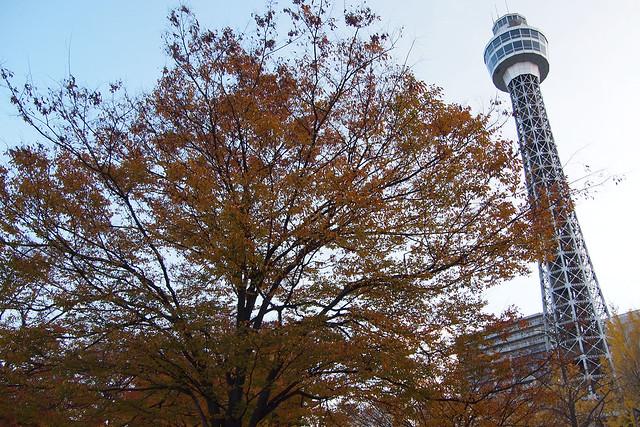 20101127_154321_横浜_山下公園