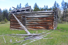 Old Broken Down Wodden House (Gordon Jeffries) Tags: old house history broken outdoors cabin 100 80 destroyed wodden