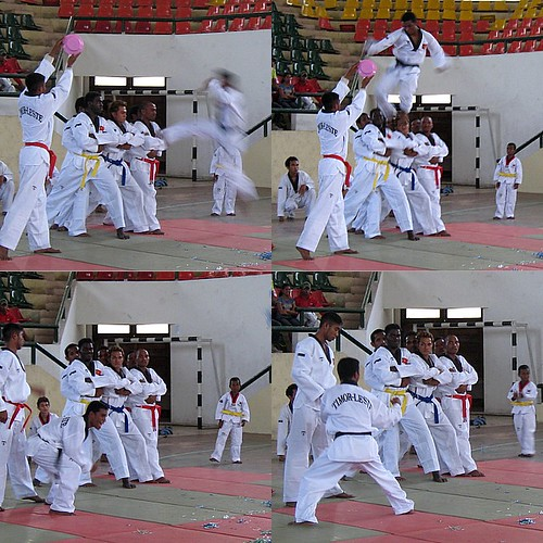 "taekwondo"""""