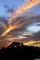 HollywoodSunset14 (mcshots) Tags: california city autumn sunset sky urban usa colors clouds losangeles images socal hollywood mcshots