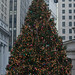 Wall Street Christmas Tree 2007