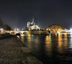 Cathédrale Notre-Dame de Paris - 26-01-2008 - 21h40