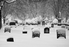 Laurel Hill Cemetery (brentdanley) Tags: winter snow cemetery grave tombstone snowing saco hdr laurelhillcemetery 3exp