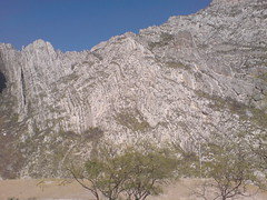 DSC00847 (KilltheBEAT) Tags: pink love nature happy glamour earth free sensations huasteca